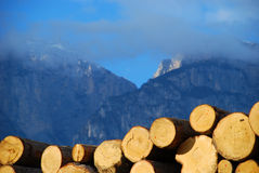 Woodpile. It's a photo of a woodpile in Dolomiti, Italy, Alps Stock Photography