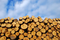 Woodpile. It's a photo of a woodpile in Dolomiti, Italy, Alps Royalty Free Stock Photography