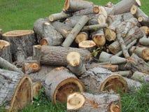 woodpile Stockbilder