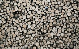 woodpile Stock Afbeelding