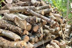 woodpile Photographie stock
