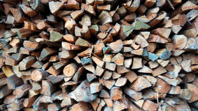 woodpile Obraz Stock