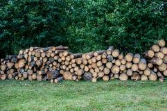 Woodpile auf Wiese Stockfotos