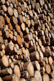 Woodpile background Royalty Free Stock Photography