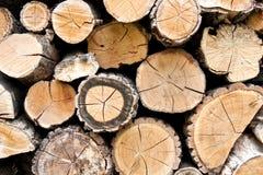 Woodpile Brennholz Lizenzfreies Stockbild