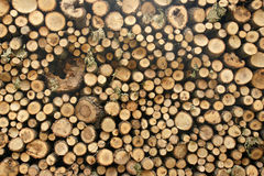 Woodpile. Bulgaria, village, autumn, felled trees,  timber, stacked, lumber, warehouse, storage, firewood, woodpile, dry leaves, background Royalty Free Stock Photos