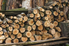 Woodpile of chopped lumber. Pile of wood logs. Stacked firewood timber Royalty Free Stock Photo