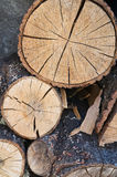 Woodpile. Royalty Free Stock Photography
