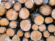 Woodpile Royalty Free Stock Image