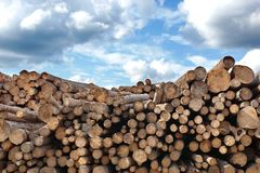 Woodpile of cut Lumber Stock Images