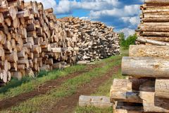 Woodpile of cut Lumber Royalty Free Stock Images
