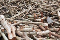 Woodpile de la madera de construcción cortada Foto de archivo