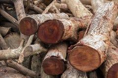 Woodpile de la madera de construcción cortada Foto de archivo libre de regalías