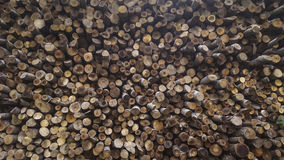 Woodpile. Detail view of stack of logs Royalty Free Stock Photography