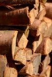 Woodpile do log do Meados de-tamanho, fim fotos de stock royalty free
