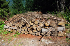 Woodpile in the Dolomites Stock Photography