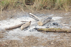 Woodpile e cinzas imagens de stock royalty free