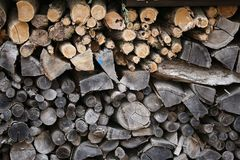 Woodpile on the edge of the forest. Forest. Woodpile on the edge of the forest royalty free stock photo