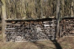Woodpile on the edge of the forest.  stock photos