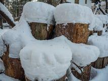 Woodpile empilhado da lenha sob a neve, Novosibirsk, Rússia imagem de stock royalty free