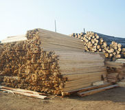 Woodpile in field royalty free stock photo