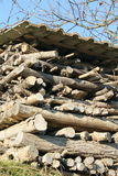 Woodpile. The woodpile in the field mountan stock photos