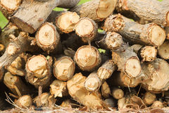 Woodpile of firewood. Chopped firewood for home Royalty Free Stock Photography