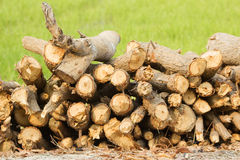 Woodpile of firewood. Chopped firewood for home Royalty Free Stock Photo