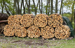 Woodpile of firewood. Chopped firewood for home heating are the woodpiles in the yard Stock Image