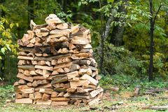 Woodpile. Firewood stacked in a  Stock of firewood in the forest royalty free stock photo