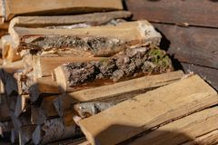 Woodpile. Firewood stacked in a  Birch wood at close range royalty free stock photos