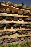 Woodpile. In a forest in the Alps stock photos