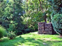 Woodpile in the forest in a valley in Hungary.  royalty free stock photos