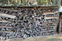 Woodpile of the forest. Woodpile on the edge of the forest stock photos