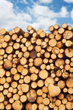 Pile of freshly cut lumber Royalty Free Stock Photos