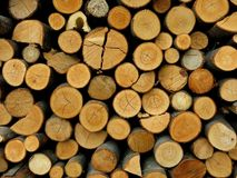 Woodpile Kindling Firewood Detail Stock Photo