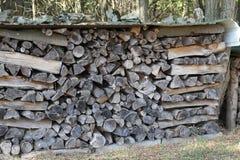 Woodpile las zdjęcia stock