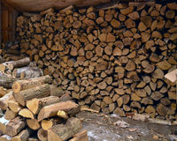 The Woodpile Royalty Free Stock Image
