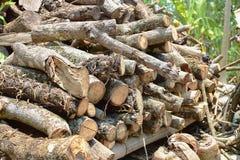Woodpile. Put on the wood shelf Stock Photography