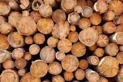 Woodpile rżnięta tarcica fotografia royalty free