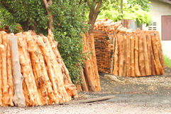 Woodpile, raw material Royalty Free Stock Photo