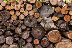 A woodpile of round logs and wood chucks in the countryside Stock Images