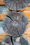 Woodpile in section Stock Image