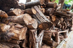 Woodpile in Shed Stock Photos