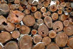 Woodpile in Snow. Pile of firewood in the snow royalty free stock image