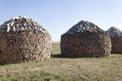 Woodpile stacked circular manner Royalty Free Stock Photo