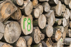 Woodpile Royalty Free Stock Photography