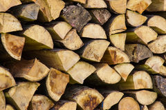 Woodpile stocked forest Royalty Free Stock Photos
