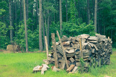 Woodpile of timbers. Woodpile in the forest with green background Royalty Free Stock Photography