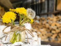 Woodpile van berkbrandhout Een boeket van gele en witte paardebloemen in een glaskruik Voorbereiding van hout voor de oven royalty-vrije stock foto's